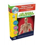 Interactive Whiteboard Lessons Plans, Cells, Skeletal & Muscular Systems