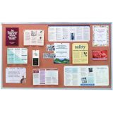 Wood Frame Natural Corkboard, 4' x 6'
