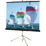 Buhl Tripod Screen