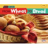 Start to Finish, From Wheat to Bread