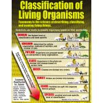 Living Organisms Teaching Poster Set