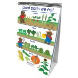 Early Childhood Science Readiness Flip Charts, All About Plants