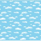 Fadeless® Design Roll, 48 x 50', Clouds