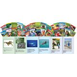 TIME For Kids® Grade 1, 30-Book Set, Spanish
