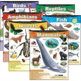 Exploring...Series Learning Chart Combo Pack