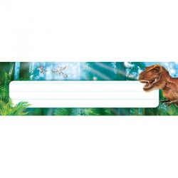 Discovering Dinosaurs™ Desk Toppers® Name Plates
