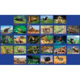 Alphabet Animals PhotoFun Rug™, 6' x 8'4 Rectangle
