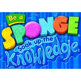 Be a sponge. Soak up the knowledge.