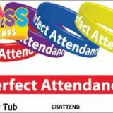 Perfect Attendance! Class Bands