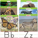 Animals From A to Z Alphabet Set: Manuscript