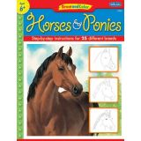 Draw and Color, Horses & Ponies