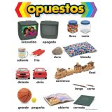 Spanish Learning Chart, opuestos (Opposites)