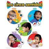 Spanish Learning Chart, los cinco sentidos (Five Senses)