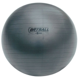 53 cm Fitpro BRT Training & Exercise Ball