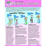 Memory Systems SmartCard