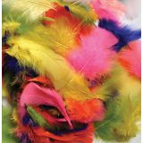 Feathers, Bright Hues, Approx. 325 Pieces