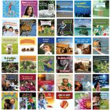 Bilingual Board Books, Set of 36 Board Books