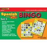 Spanish in a Flash Learning System: Set 3, Bingo Games