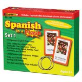 Spanish in a Flash Learning System: Set 1 Color Coded Flash Cards
