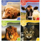 My World Board Books, English, Set of 4