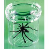 Geosafari® Bug Viewers - 3 Bug Viewer- Set of 6 Bug Viewers