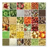 Square Meals Cardboard Jigsaw Puzzle (500pcs)