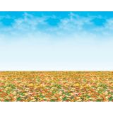 Fadeless Designs 48x50' (Autumn Landscape)