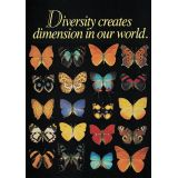 Argus® Charts - Diversity Creates Dimension in Our World