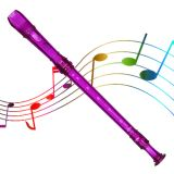 Grover Candy Apple 2 Piece Recorder, Purple