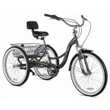 24 Rock Point Adult Tricycle