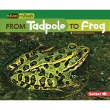 Start to Finish, From Tadpole to Frog