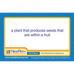 Life Science Vocabulary Builder Flash Card Set, Middle School