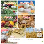 Healthy Eating with MyPlate Book Set, Set of 6