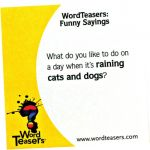 WordTeasers® Conversation Starters, Funny Sayings