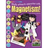 Science Alliance™ Physical Science, Magnetism