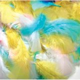 Feathers, Spring Colors