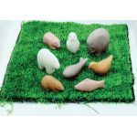 Sensory Play Animals