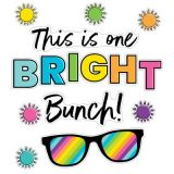 Kind Vibes We Are One Bright Bunch Bulletin Board Set