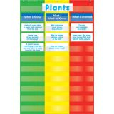 3-Column Chart Pocket Chart