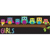 Laminated Hall Pass, Owls Girls Pass