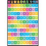 Numbers 1-100 13 x 19 Smart Poly™ Chart