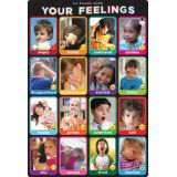 Emotions 13 x 19 Smart Poly® Chart