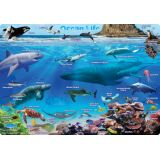 Ocean Life, PosterMat Pals®, 12 x 17.25 Smart Poly®, Single Sided