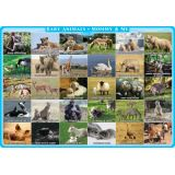 Mommy and Me Animals, PosterMat Pals®, 12 x 17.25 Smart Poly®, Single Sided