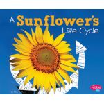 Explore Life Cycles, Set of 6 books