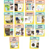 Nonfiction Text Features Mini Posters