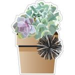 Schoolgirl Style™ Simply Stylish Potted Succulents Cut-Outs