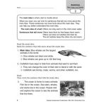 Reading Comprehension Fundamentals, Grade 2