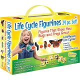 Life Cycle Figurines, 24-Piece Set