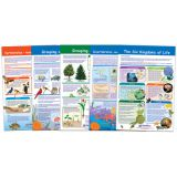 The Six-Kingdoms of Life Bulletin Board Chart Set of 5, Grades 3-5